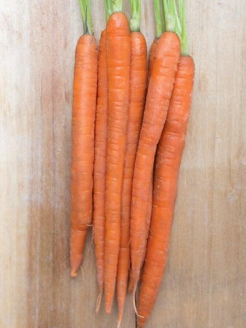 Carrot, Mokum Hybrid