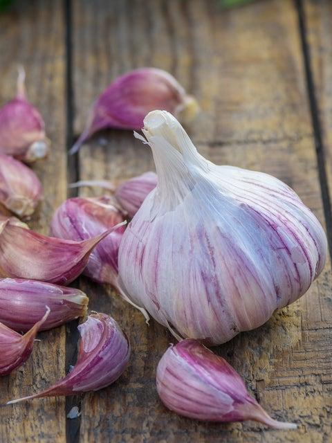 Garlic, Deerfield