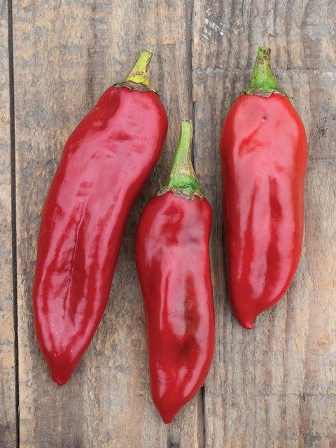 Pepper, Hot, Anaheim Chili
