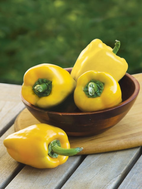Pepper, Sweet, Golden Giant II Hybrid