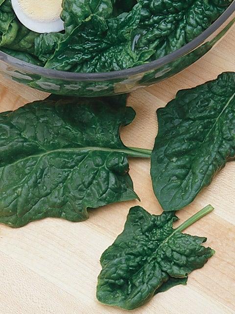 Spinach, Avon Hybrid
