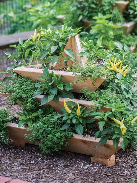 Plant Pyramid Raised Planters