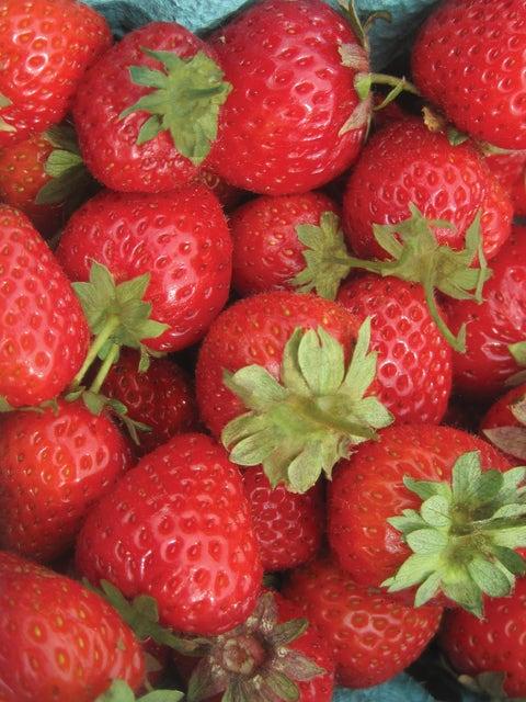 Strawberry, Sweet Charlie