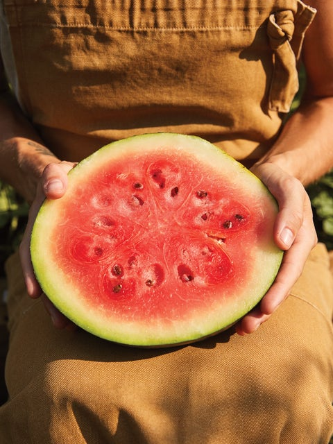 Watermelon, Bush Sugar Baby