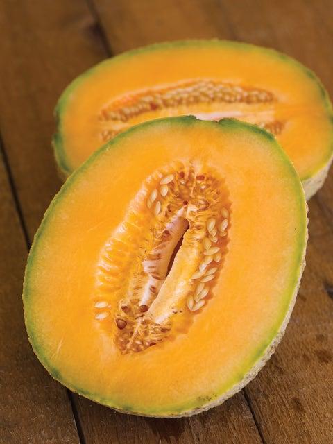 Cantaloupe, Honey Bun Hybrid