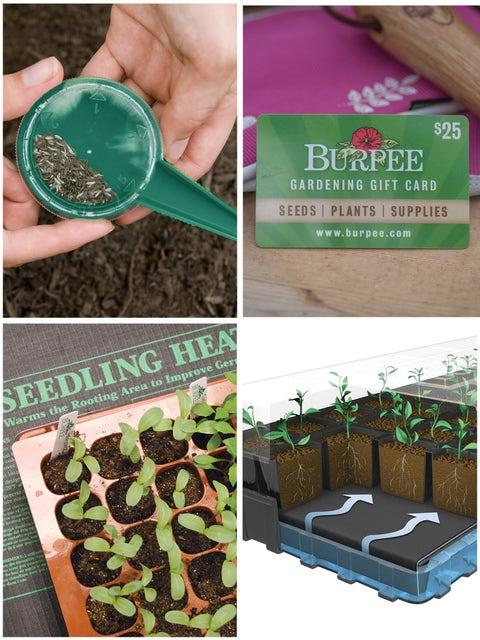 Seed Starting Success Set