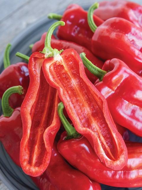 Pepper, Sweet, PeppiGrande Red Hybrid