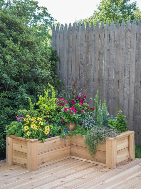 L-Shaped Cedar Planter