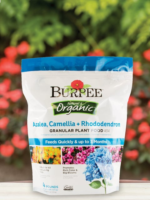 Burpee Natural Organic Azalea, Camellia, Rhododendron Plant Food 4-3-4