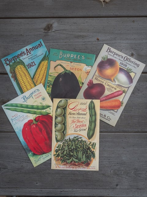 Burpee Heritage Seed Collection